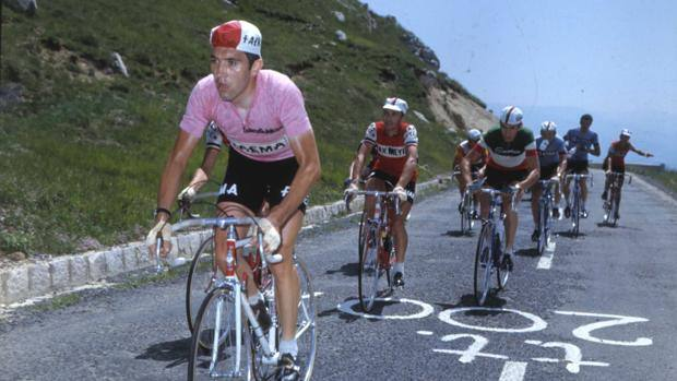 Five Times Winner Eddy Merckx in the Maglia Rosa