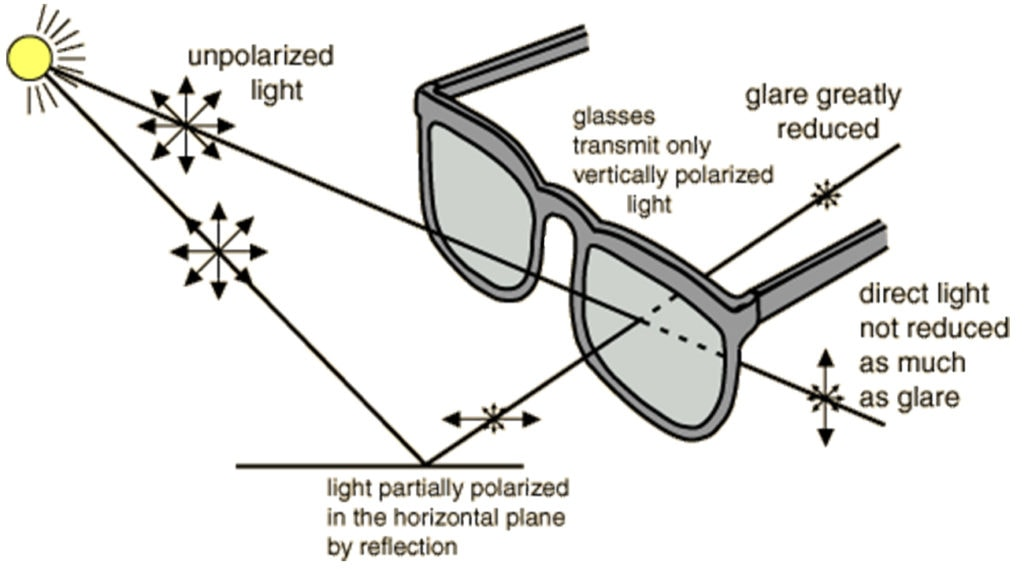 How Polarized Sunglasses Work