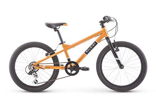 Raleigh Rowdy 20 Inch Bike