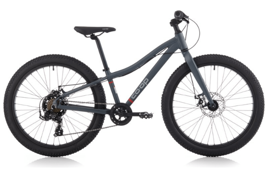 Co-op Cycles REV 24 Plus