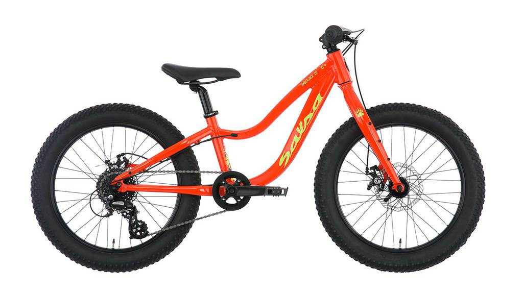 Salsa Timberjack 20 Plus Kids Bike