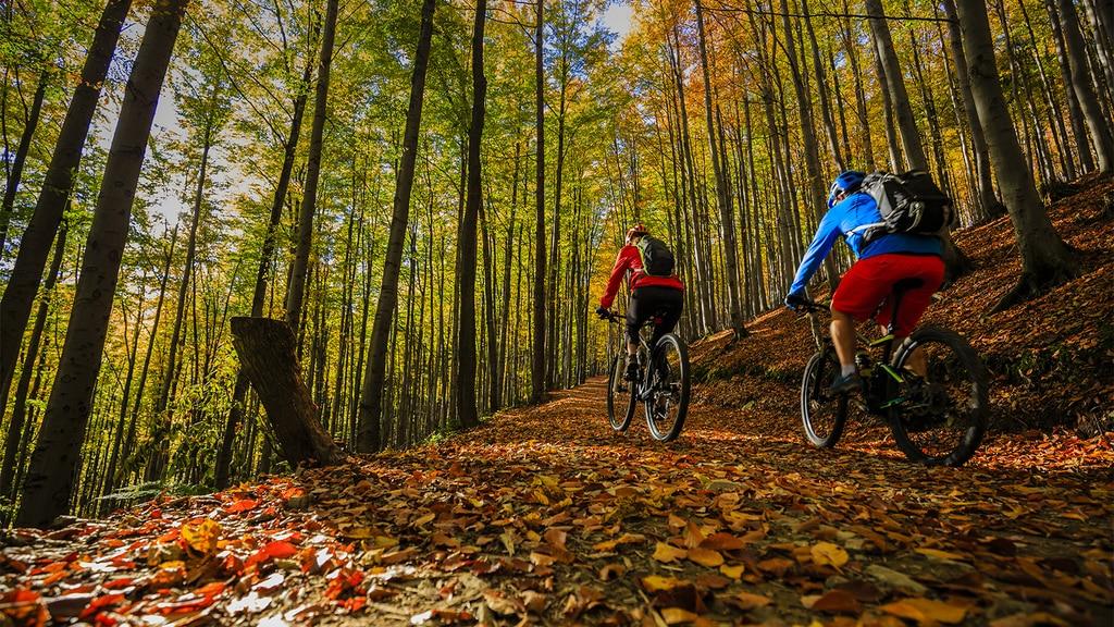 Mountain Bike Trails in Arkansas