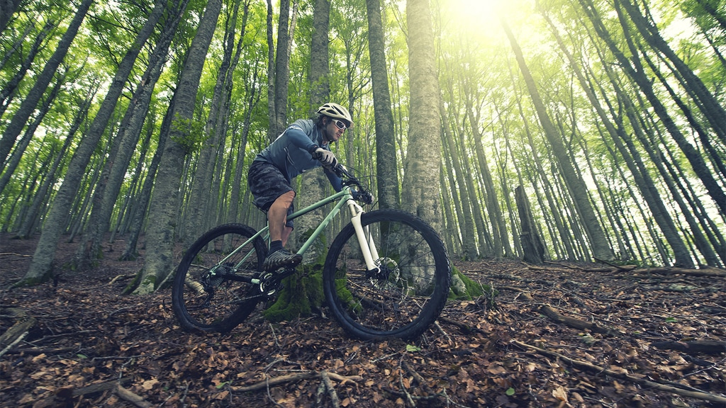 Mountain Bike Trails in Georgia