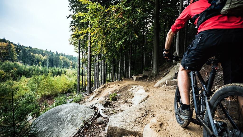 Mountain Bike Trails in Michigan