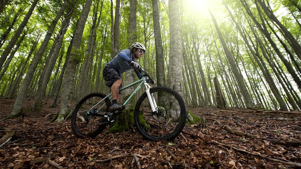 Mountain Bike Trails in New Jersey