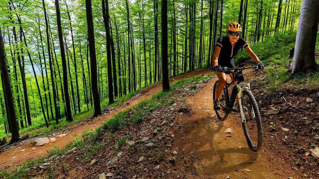 Mountain Bike Trails in New York