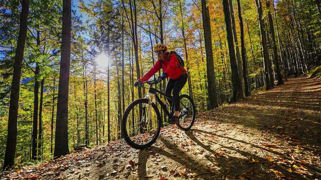 Mountain Bike Trails in Pennsylvania