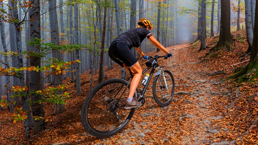 Mountain Bike Trails in Washington