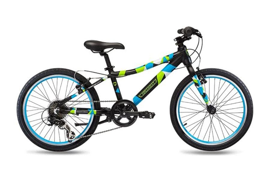 Guardian Original 20 Inch Kids Bike